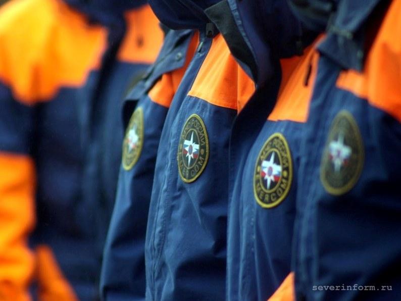 Неменее 70 тыс. служащих МЧС обеспечат безопасность впроцессе выборов 18сентября