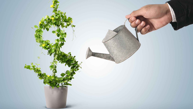Ямал теряет привлекательность. Регион вылетел изТОП-20 инвестиционного рейтинга