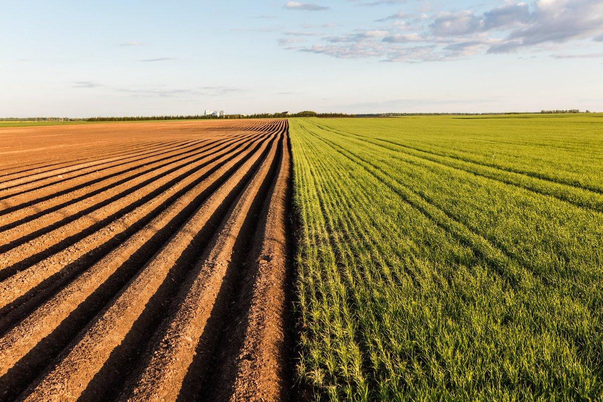 земли для сельхозпроизводства
